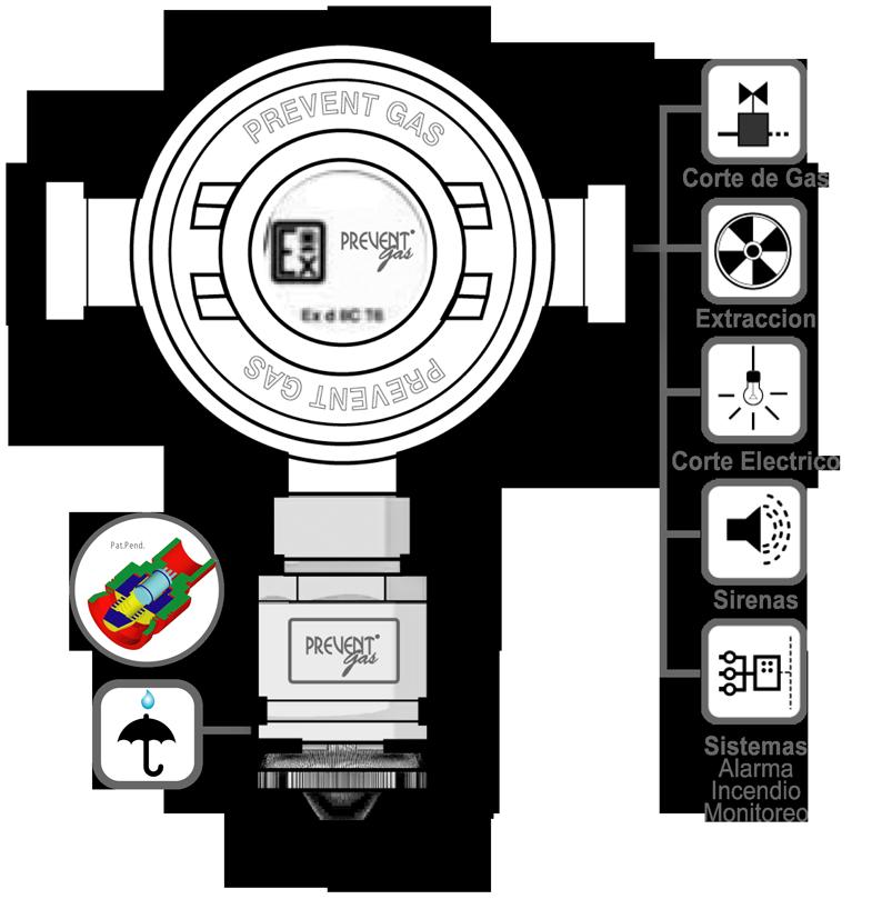 Detector APE de Metano (CH4), 3 rele. N-DSA
